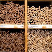 🍭Varetes de Noguera per als teus projectes creatius! Poden fer-se servir per tot allò que vulguis 💭 . #woodworking #wood #artsandcrafts #scalemodel #architecture #design #artistsoninstagram