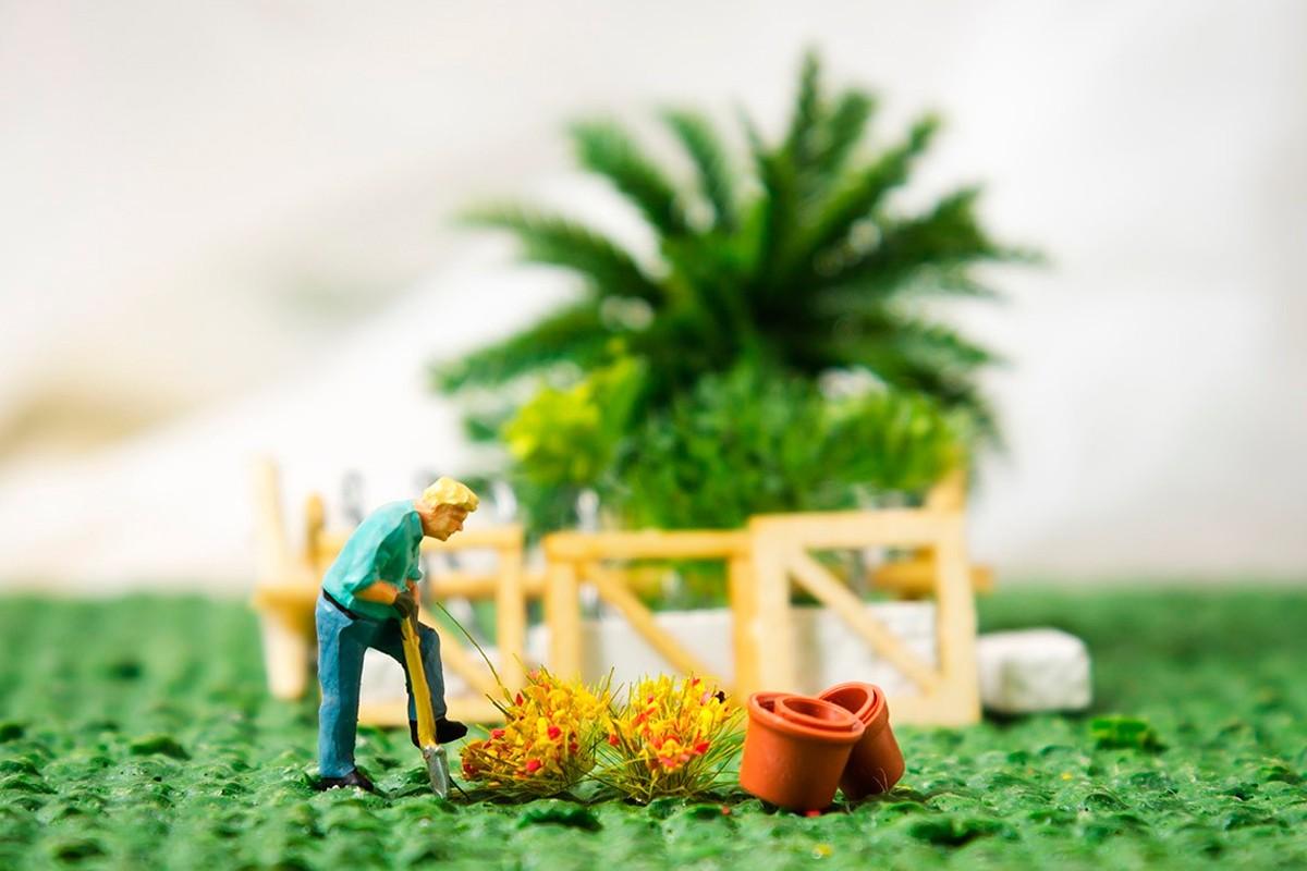 Vegetació i personatges